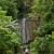 Abatan River Full-Day SUP Tour
